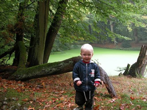 маленький человек в большом лесу