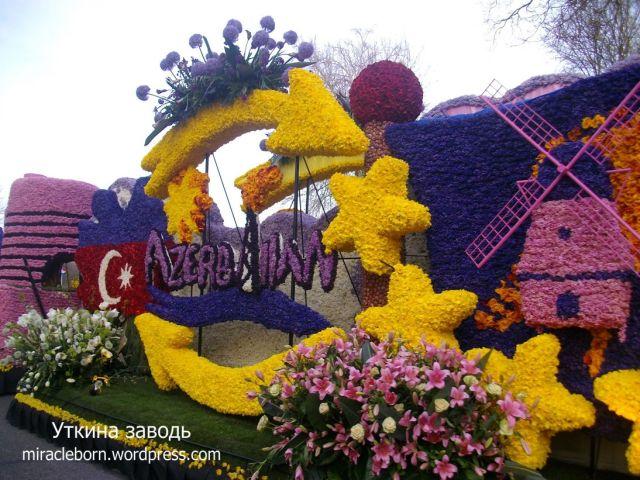 цветочный парад голландия