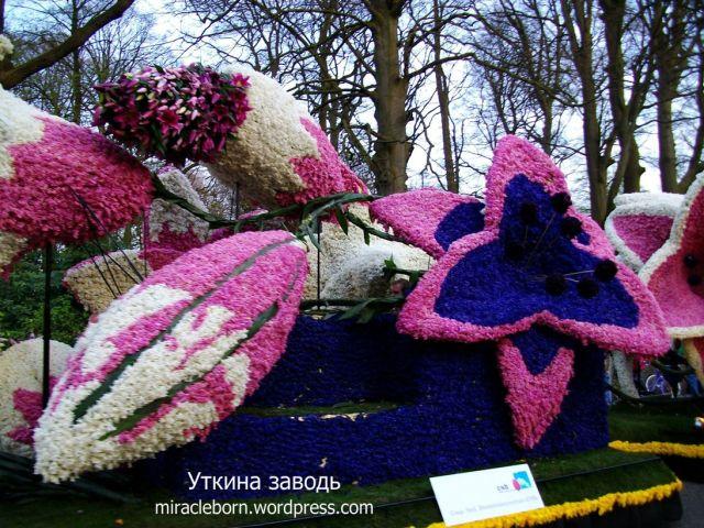 кортеж из цветов хаарлем праздник