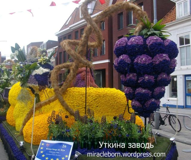 шествие цветов в голландии 2010