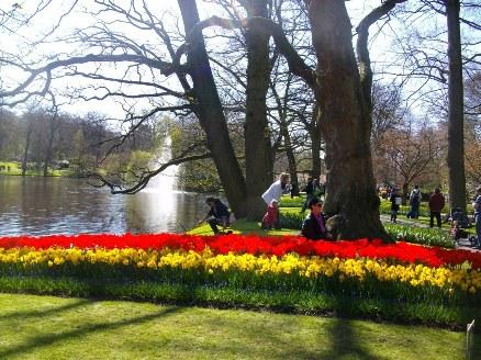 знаменитый голландский парк цветов кекенхоф